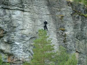 norska_priroda_20120521_1365673237